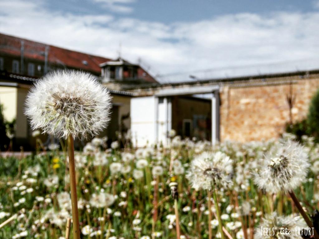 Gefängnis Ichtershausen (C) Jessika Fichtel_Feels like Erfurt (20)