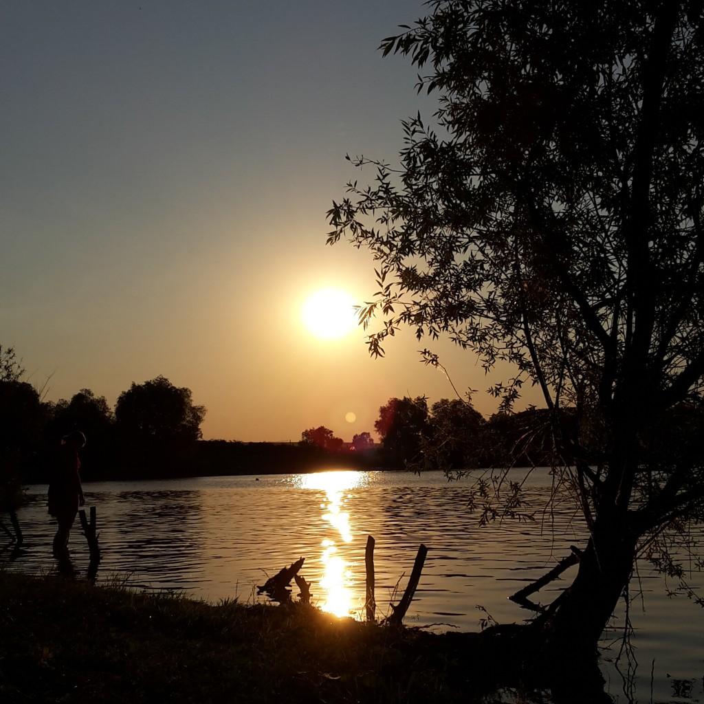 Sommer-Ausflugstipp: Der Alperstedter See