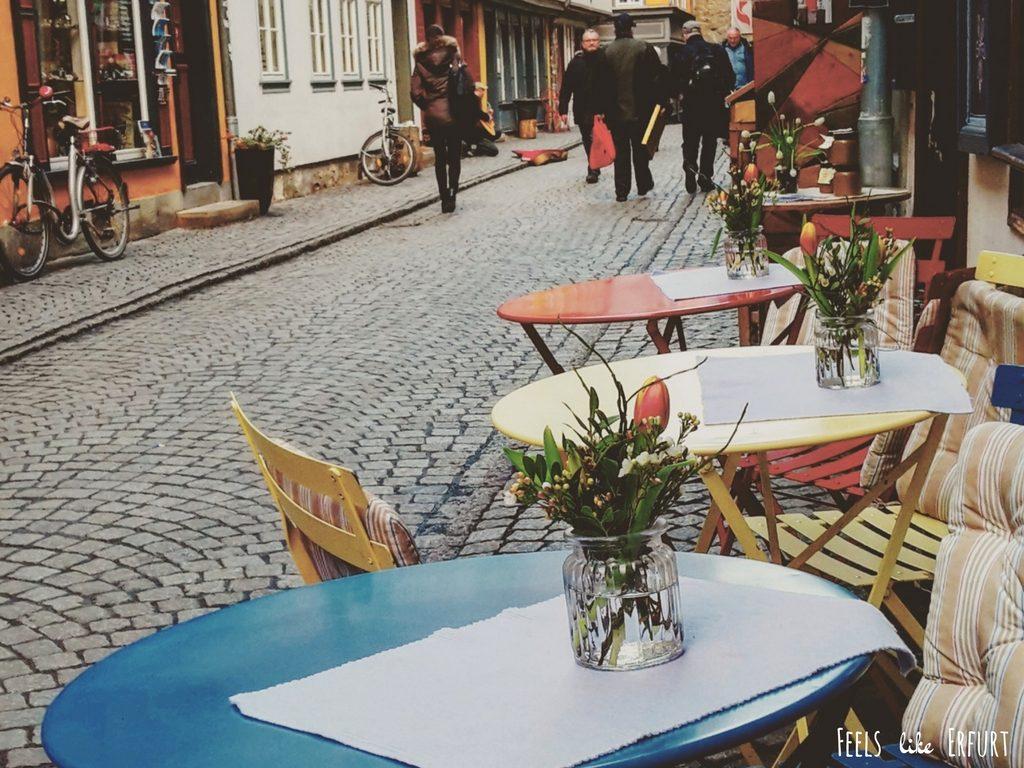 Frühling in Erfurt: Ein Traum aus rosaroten Blüten und himmlischer Eiscreme