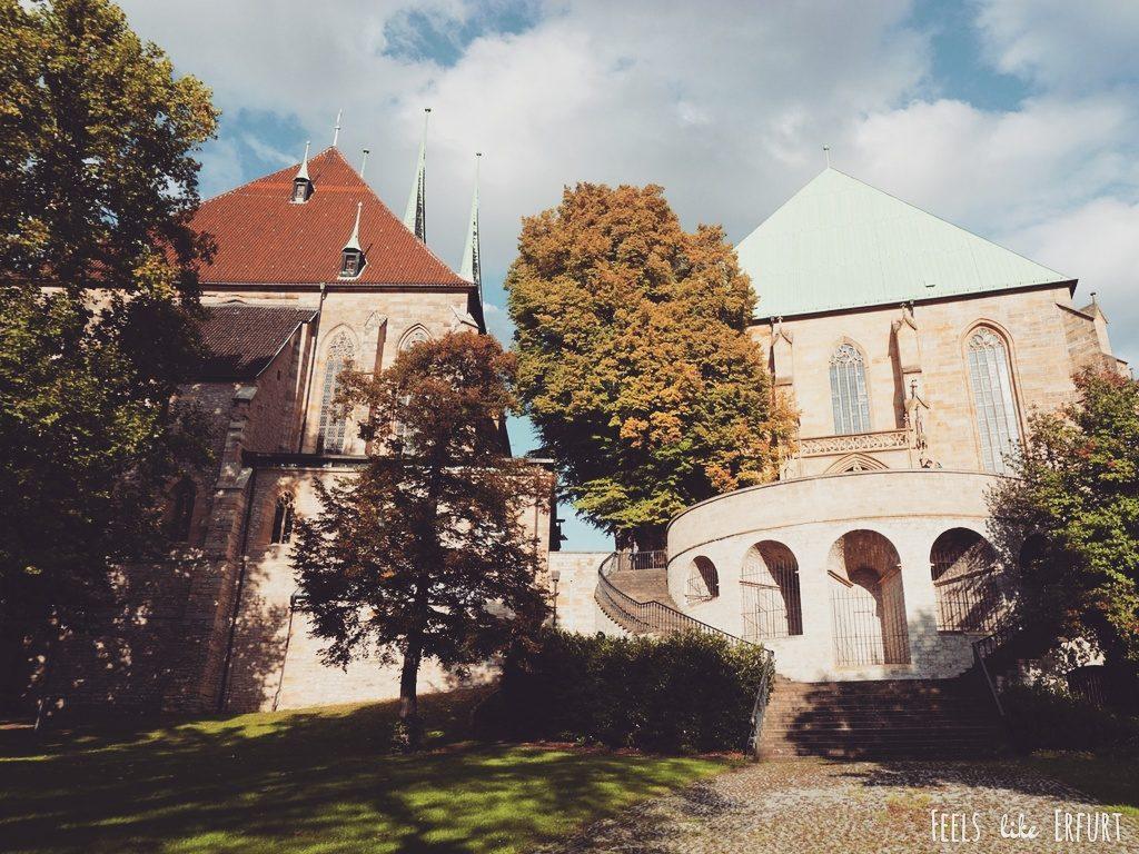 Der Erfurter Dom von hinten