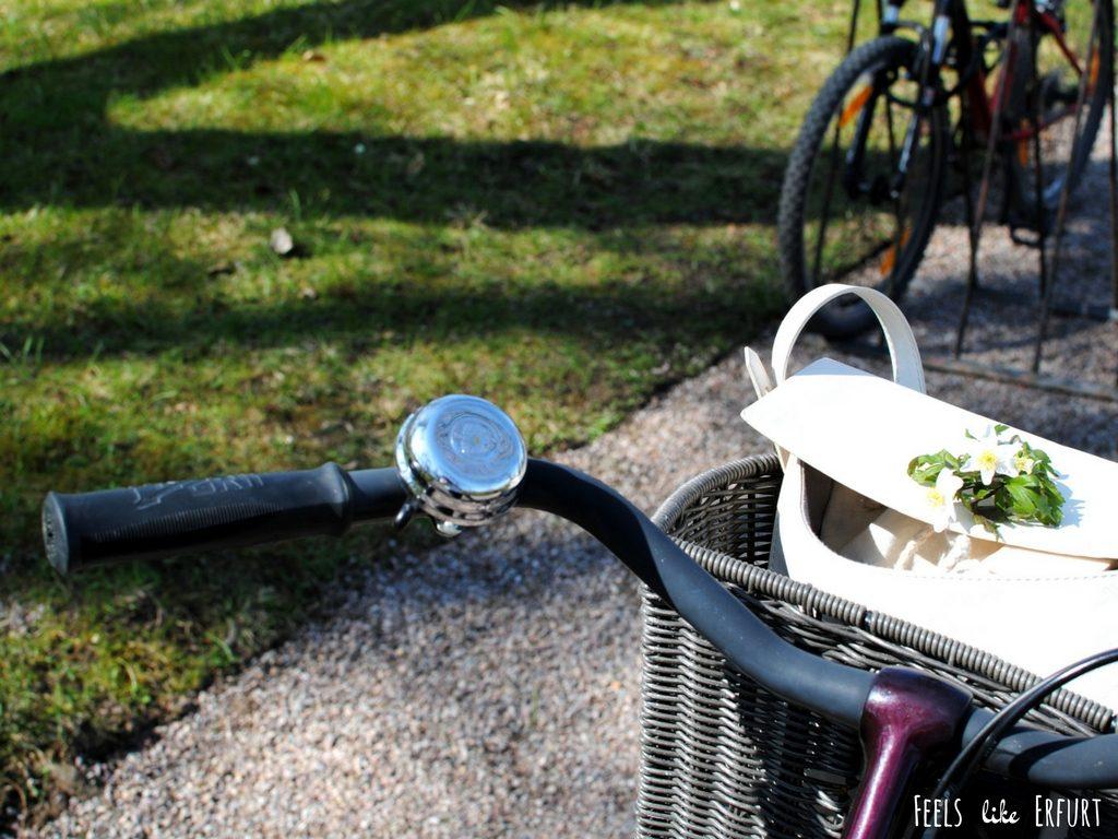 kleine Fahrradtour Erfurt Schloss Molsdorf