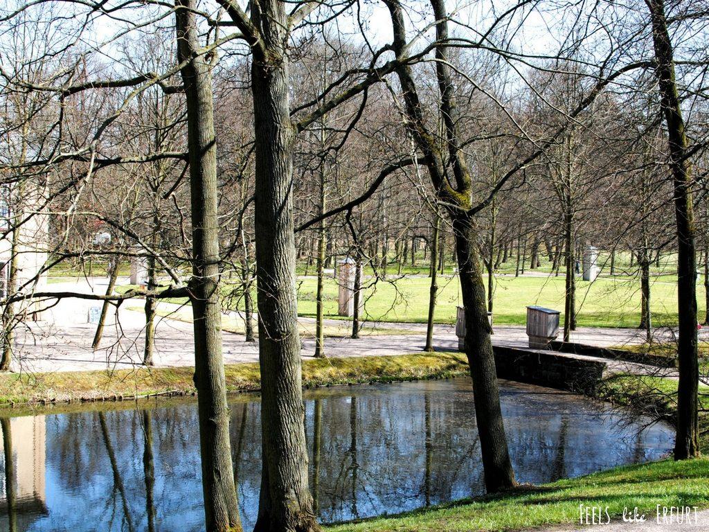 Park von Schloss Molsdorf