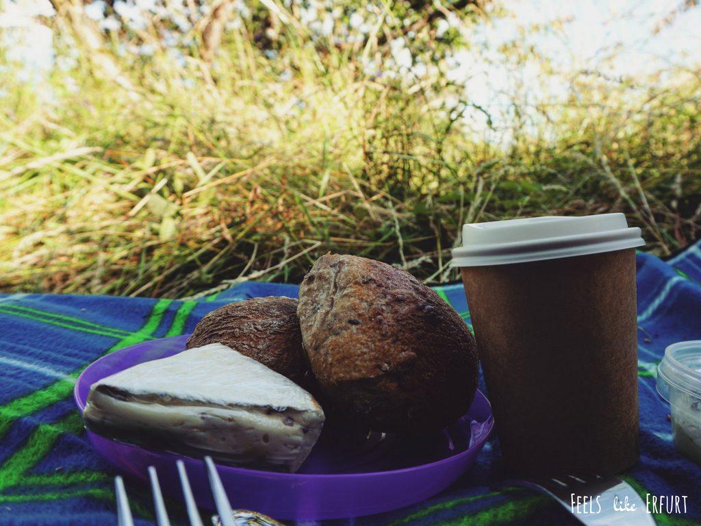 Picknick auf der Schwedenschanze