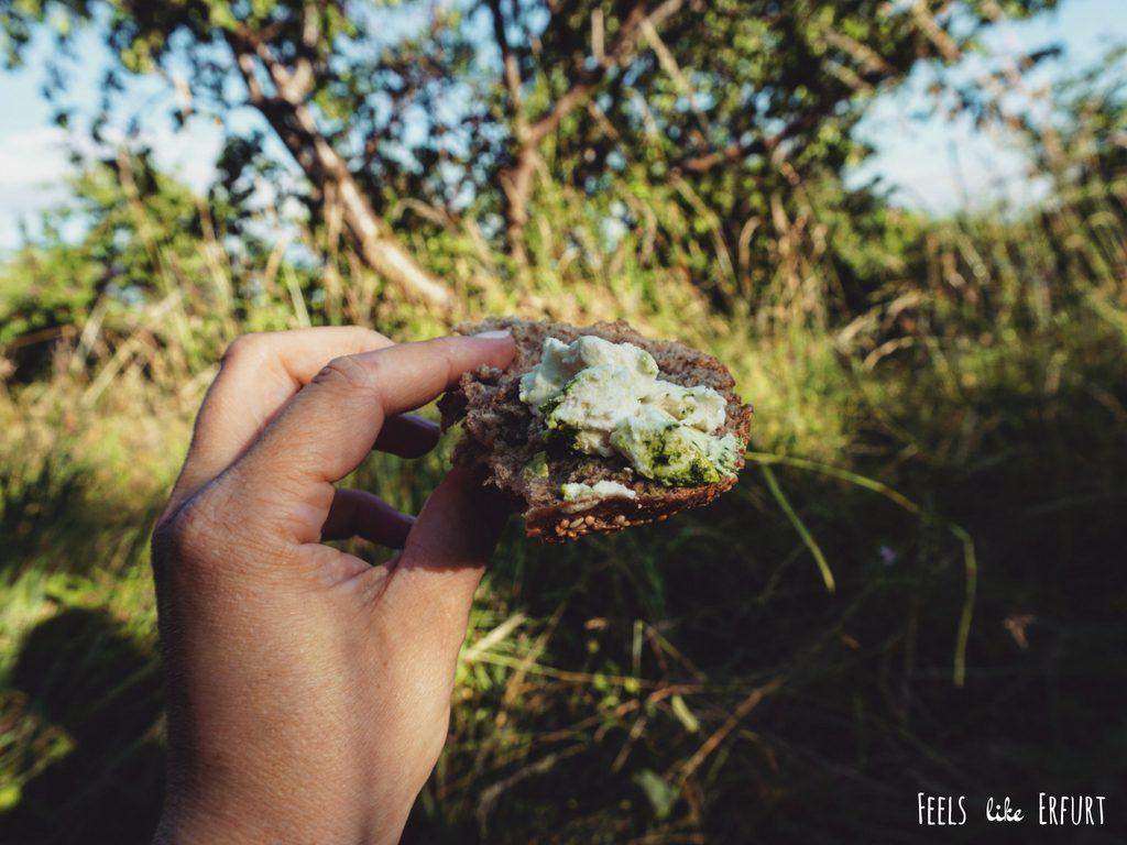 Erfurter Oasen: Picknicken auf der Schwedenschanze