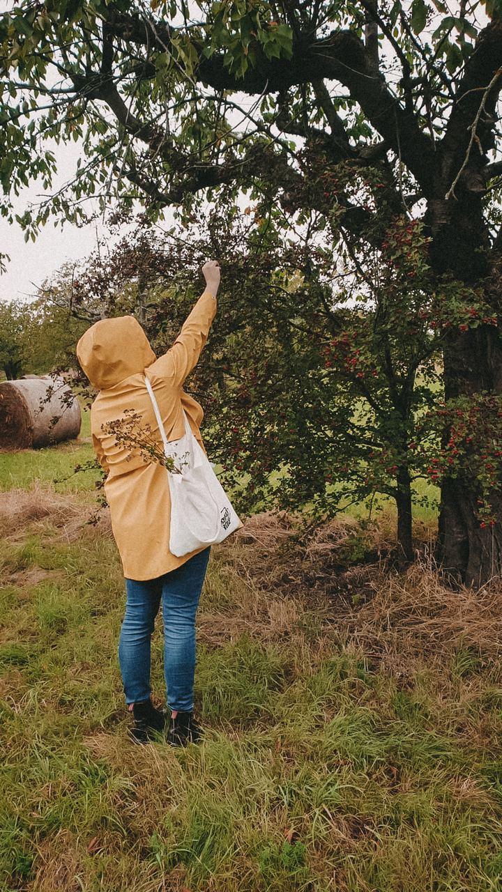 Frau im gelben Regenmantel die Beeren pflückt