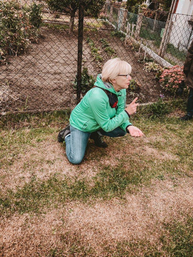 Frau erklärt den Nutzen von Pflanzen
