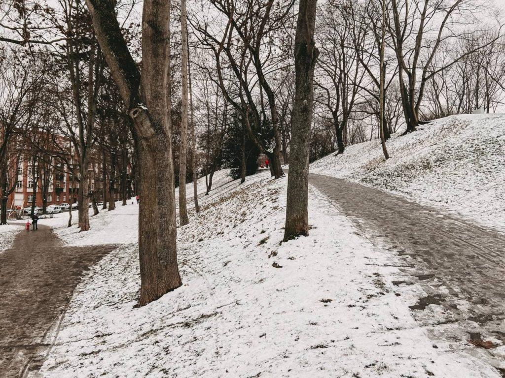 Spaziergang Erfurt Nordpark