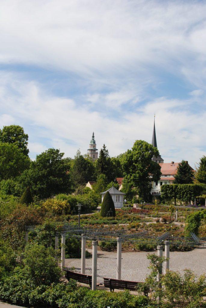Rosengarten in Bad Langensalza BUGA 2021